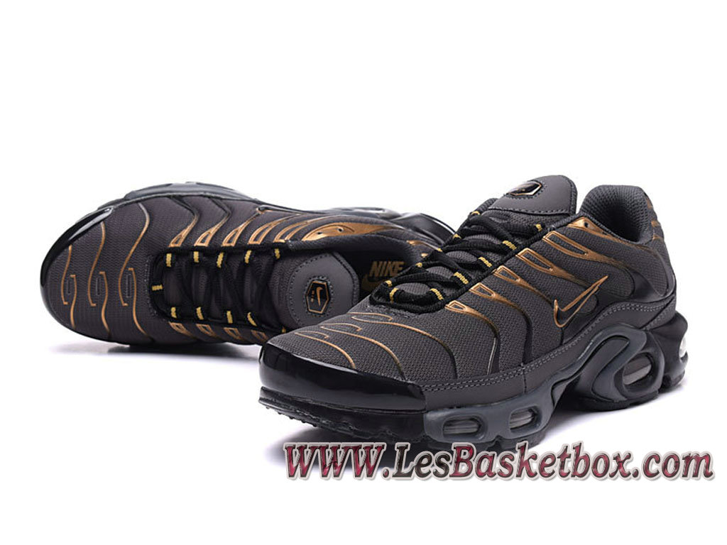 separation shoes 882d7 db464 ... Nike Air Max Plus (Nike Tn 2017) Gris Or Chaussures Tn Requin Pour homme  ...