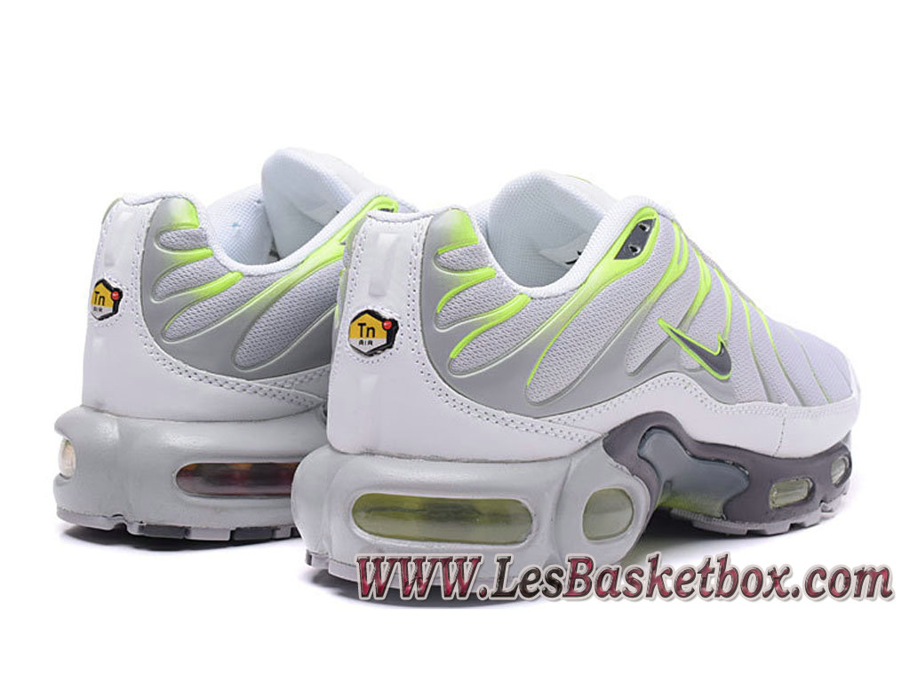 release date d703f 0b175 ... Nike Air Max Plus (Nike Tn 2017) Gris Vert Chaussures Tn Requin Pour  homme