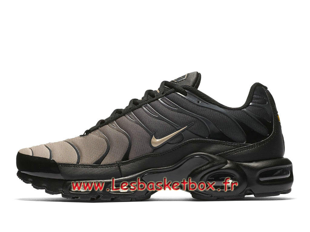online store a76b0 67399 Nike Air Max PlusTN Gradient Pack 852630026 Chaussures Tuned Prix pour  Homme ...